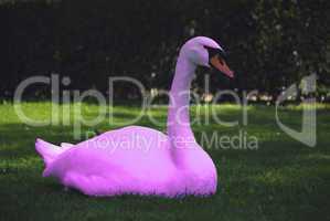 schwan in pink