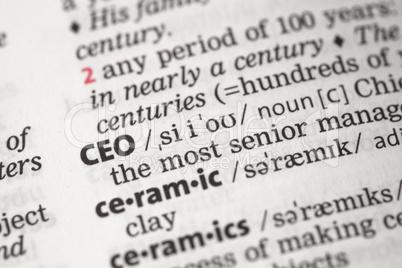 CEO definition