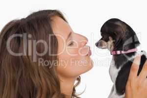 Pretty woman looking at her chihuahua
