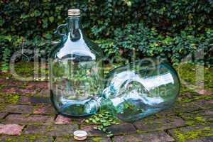 Recycle big glass wine on garden brick floor