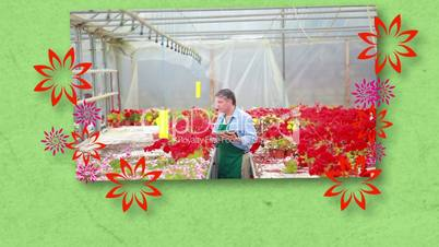 Montage of florists at work