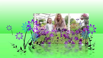 Garden center montage