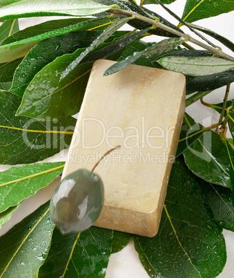 aleppo soap and laurel