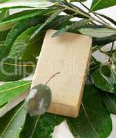 aleppo soap and laurel