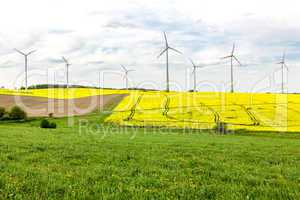 Fields and meadows with wind turbines