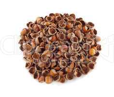 Nut shells