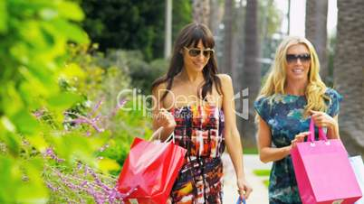 Beautiful Girls on a Shopping Day