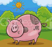 pig livestock animal cartoon illustration