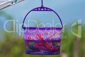 Clothespin basket