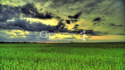 Morning In A Wheat Field. HDR Time Lapse
