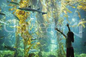 Young Girl Standing Up Against Large Aquarium Observation Glass