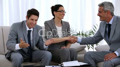 Group of business people shaking hands