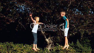 Cheerful siblings having fun on a trampoline