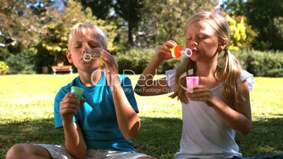 Siblings having fun with bubbles