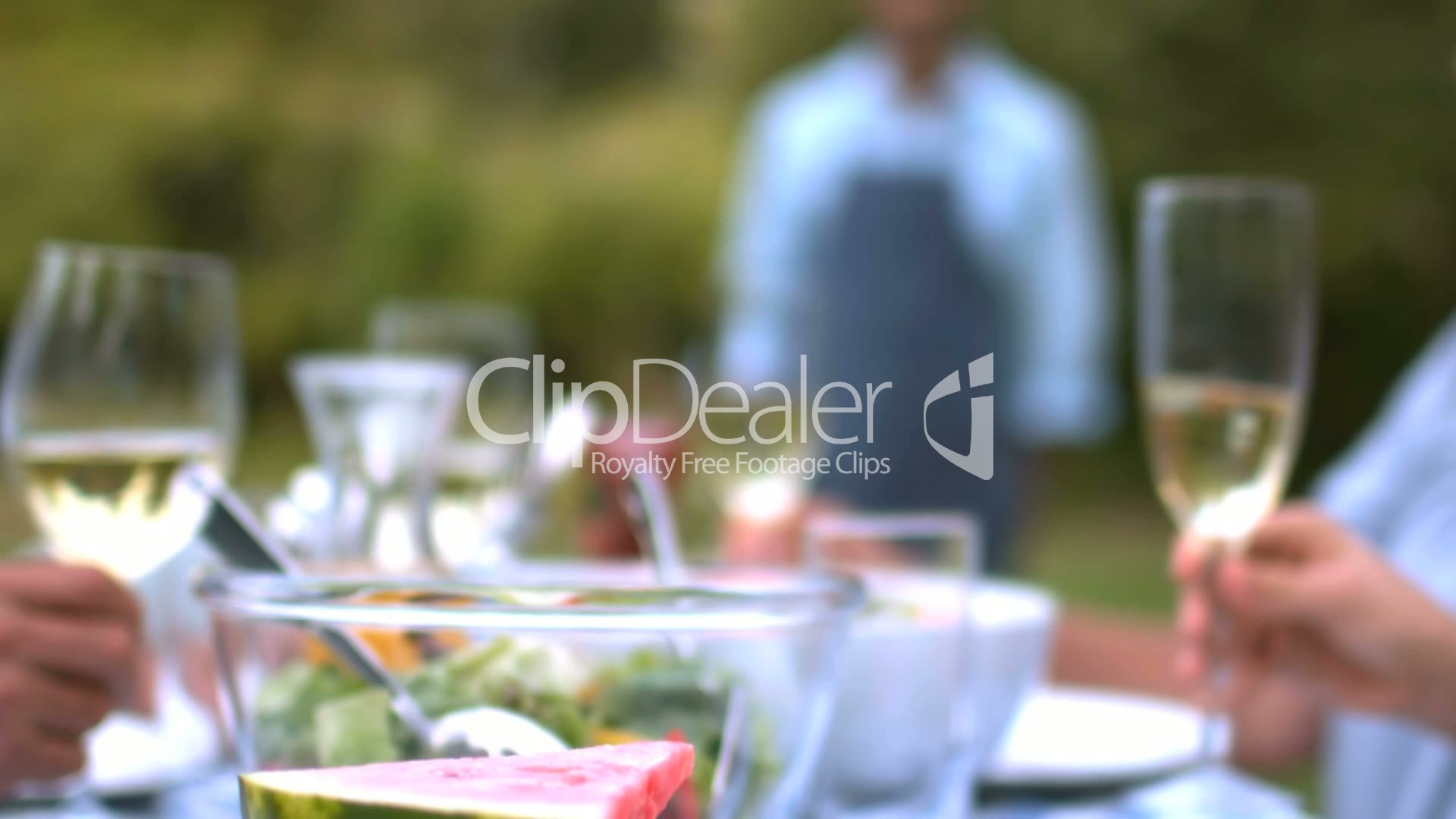 People clinking wine glasses: Royalty-free video and stock footage