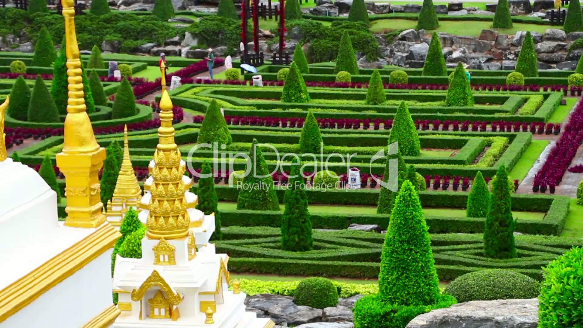 nong nooch tropical garden in thailand royalty free video and
