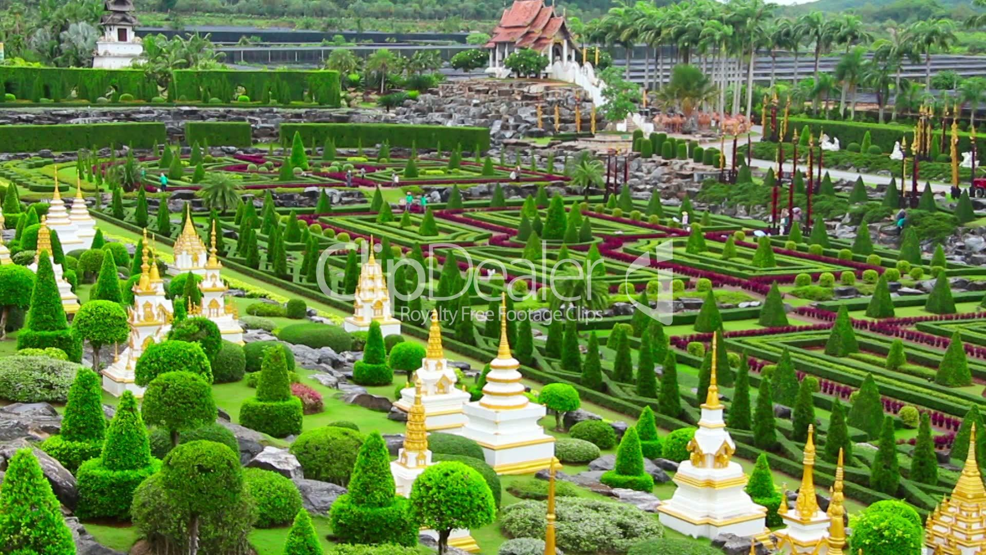 tropical garden nong nooch in thailand royalty free video and