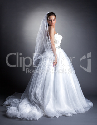 Beautiful model posing in lush wedding dress