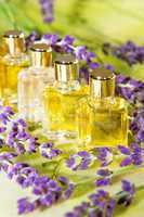 Golden plant extracts and essential oils