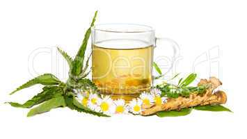 Fresch herbal infusion for detoxifying cure