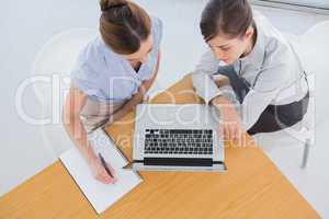 Businesswomen having a meeting