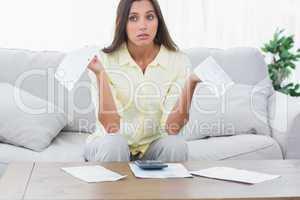 Woman doing her accounts