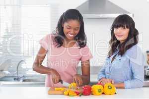Happy friends preparing vegetables