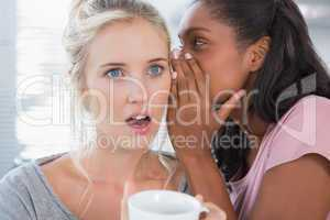 Young woman whispering secret to her friend