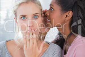 Pretty woman whispering secret to her blonde friend