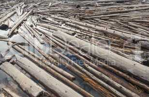 Log Jam of Tree Trunks Floting on a River