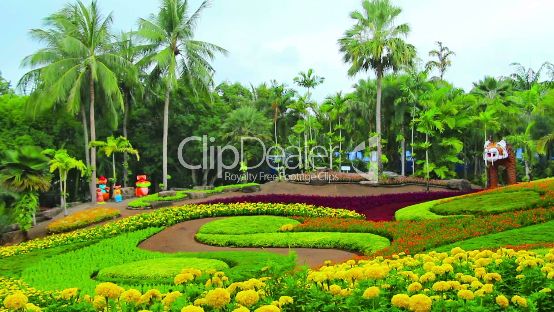 flowers in nong nooch tropical garden in thailand royalty free