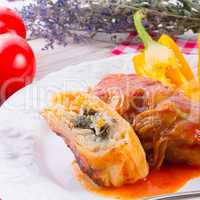 vegetarian cabbage rolls with spinach and salsa