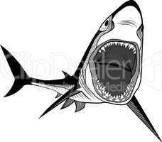 shark fish head symbol for mascot or emblem design, logo vector illustration for t-shirt. sketch tattoo design.