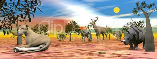 Savannah scenery - 3D render