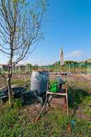Venice Burano Mazorbo vineyard
