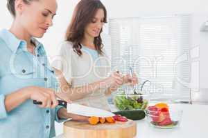 Women preparing salad together