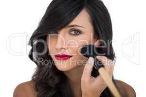 Glamorous brunette applying blusher on her cheek