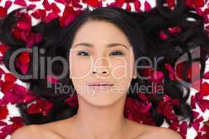 Sensual dark haired model lying in rose petals