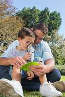 Smiling dad and son inspecting leaf with a magnifying glass