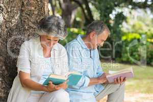 Retired couple reading books together sitting on tree trunk