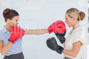 Brown haired businesswoman punching her blond colleague during b