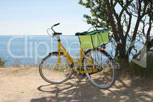 Bicycle with picnic basket