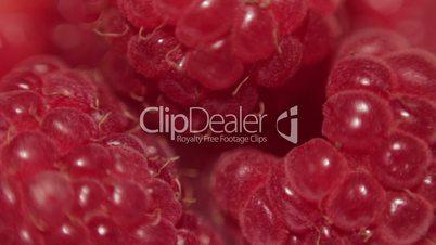 Fresh raspberries. Closeup. Shallow DOF.