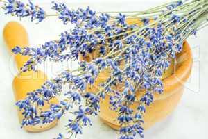 Lavendel, frischer Strauß mit Mörser