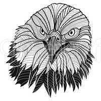 Bald eagle head as USA symbol for mascot or emblem design, such a logo.