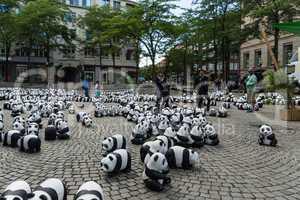 pandas in kiel