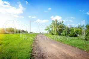 Wide road in the field