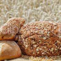 Freshly baked bread before Cornfield