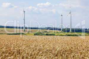 Grain field with windmills