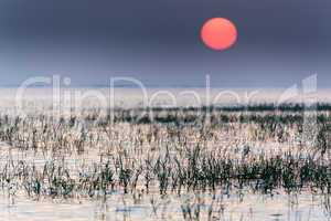sunrise on tropical lake